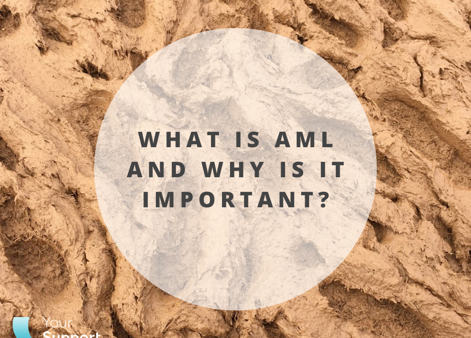 What is AML and why is it important?
