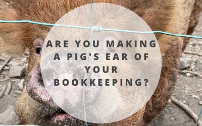 Are you making a pig's ear of your bookkeeping?